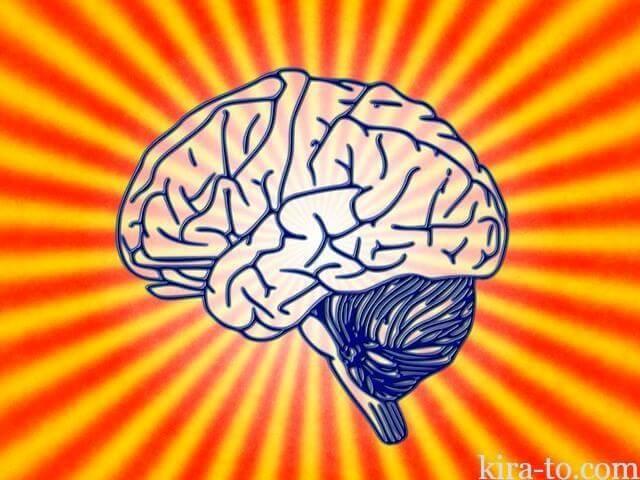 脳にはブドウ糖