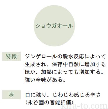 2shougabu_report_01-pdf