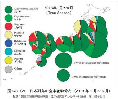 日本列島の花粉空中分布図1月6月
