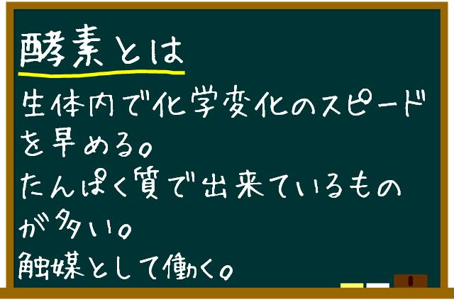 黒板で酵素の説明