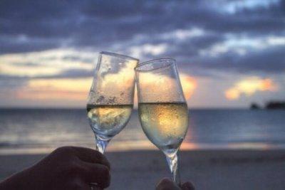 アルコール 乾杯