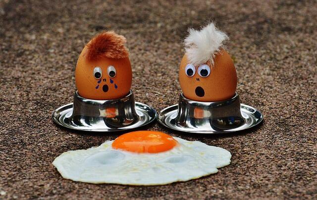 MEC食卵