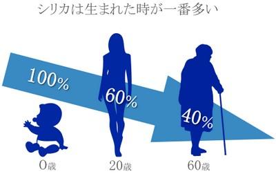 シリカは0歳を100%とすると、30代~60代で半分以下に減ってしまいます